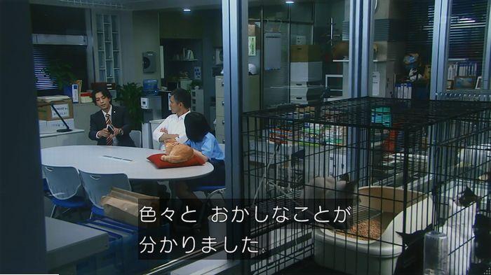 警視庁いきもの係 9話のキャプ638