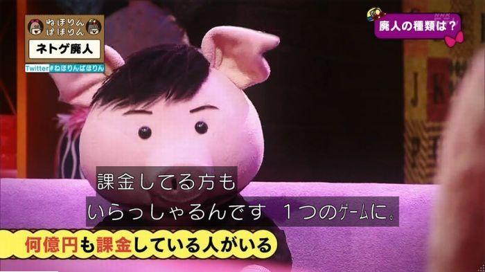 ねほりんネトゲ廃人のキャプ45