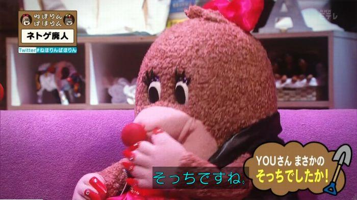 ねほりんネトゲ廃人のキャプ19