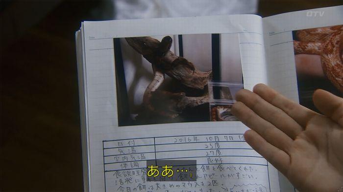 いきもの係 3話のキャプ240