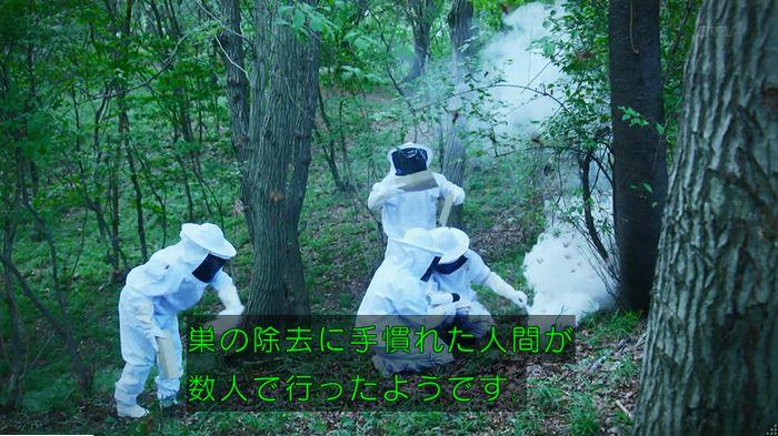 警視庁いきもの係 9話のキャプ584
