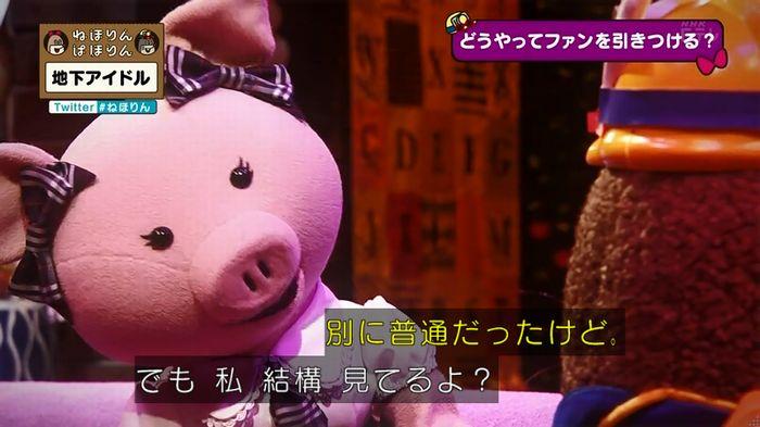 ねほりん 地下アイドル回のキャプ453