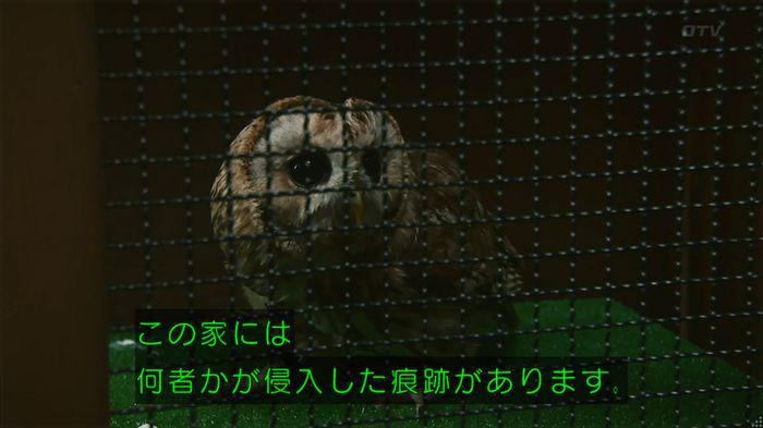 警視庁いきもの係 8話のキャプ259