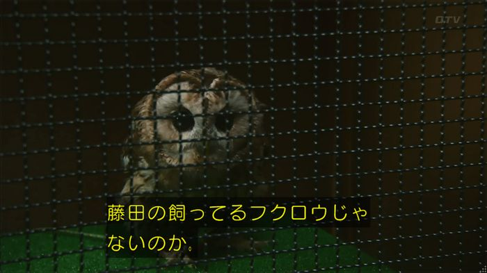 警視庁いきもの係 8話のキャプ284