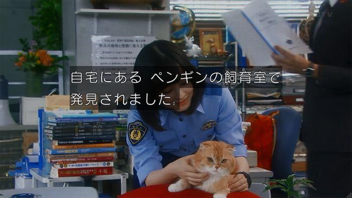 いきもの係 2話のキャプ67