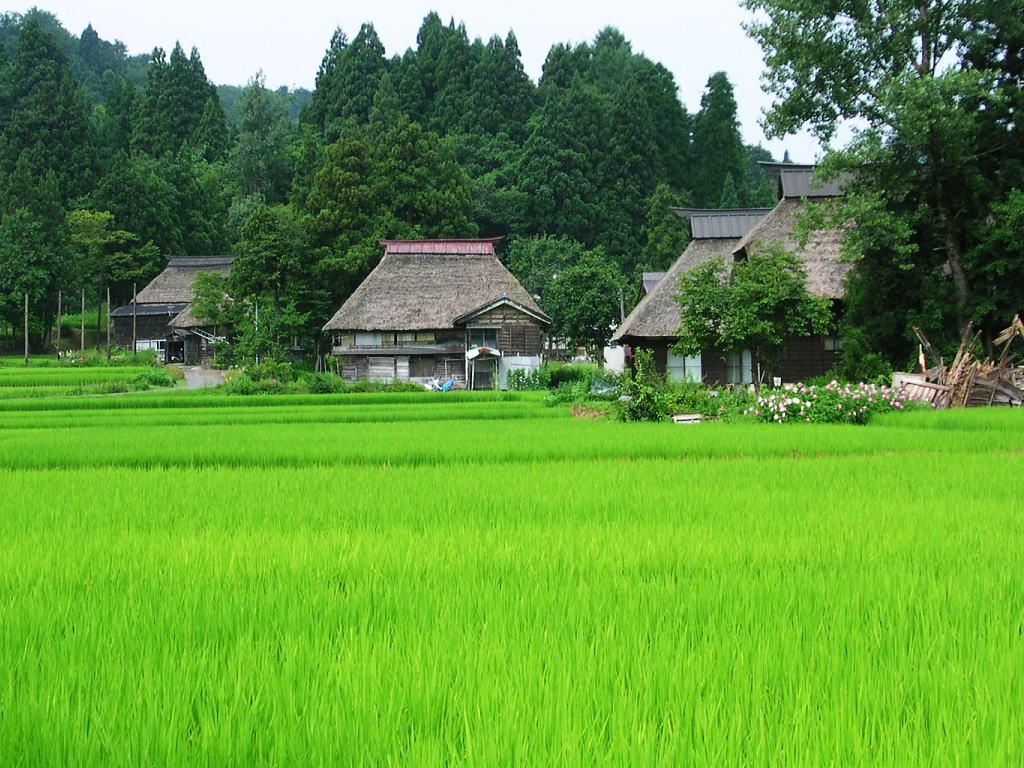 http://livedoor.4.blogimg.jp/nwknews/imgs/d/d/dd5d18fb.jpg